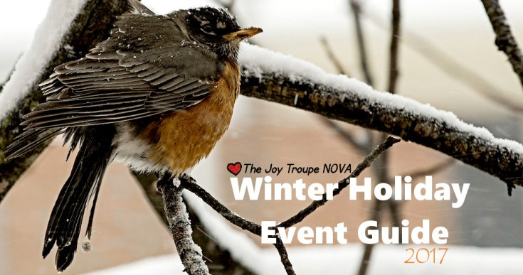 2017 NOVA winter holiday events roundup Christmas Thanksgiving New Years Eve