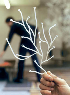 Ronan And Erwan Bouroullec Algue Pack Of 25 Vitra Algues