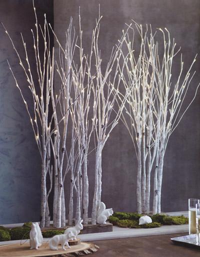 Lighted Birch Tree Forest NOVA68com