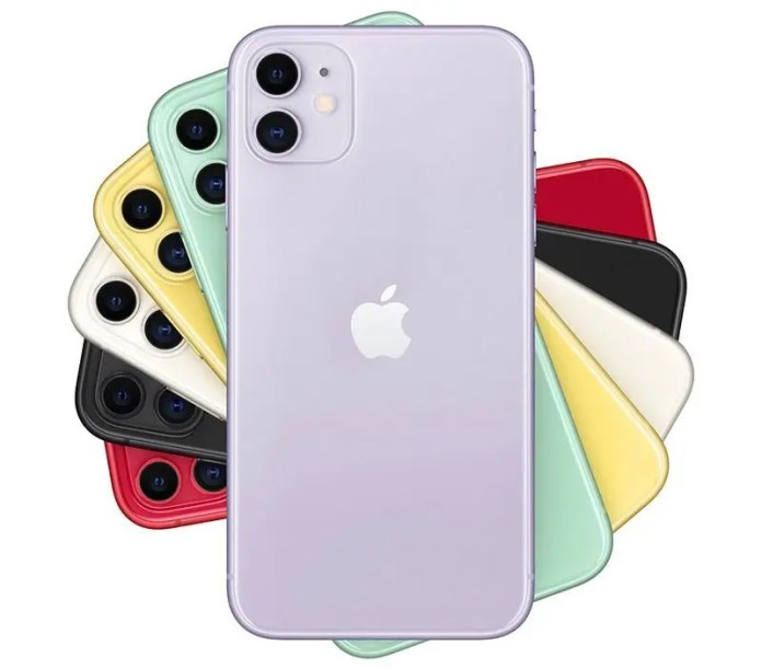 iPhone 11 color option