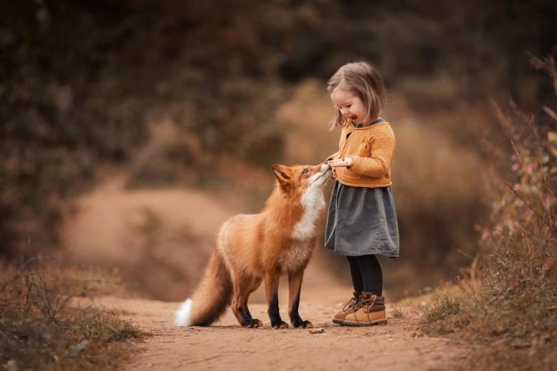 dziewczynka z lisem