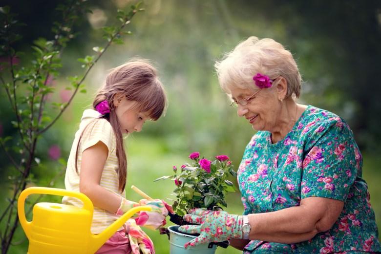 wnuczka sadząca kwiaty z babcią