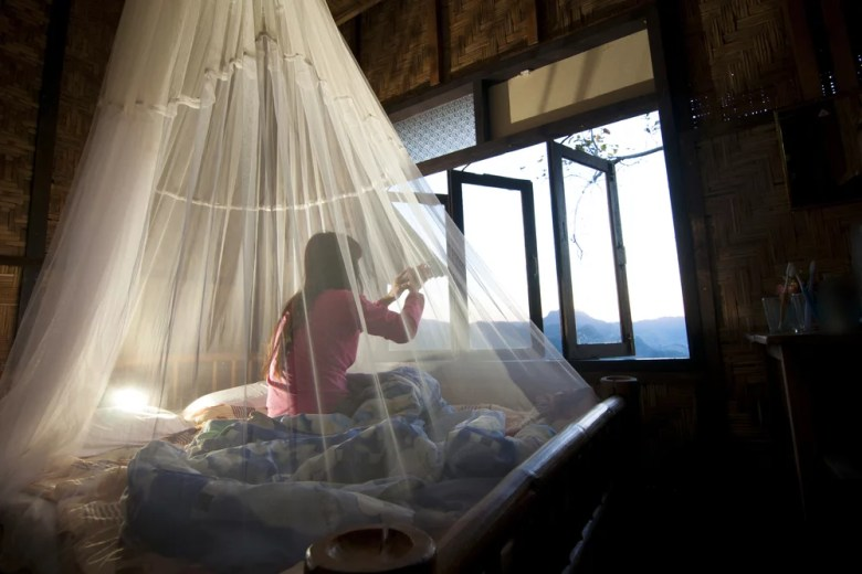 moskitiera nad łóżkiem