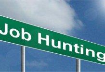 dicas de emprego na nova zelandia