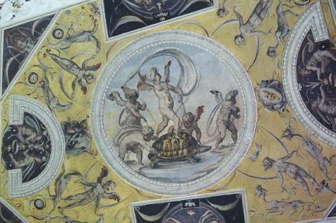La Tartaruga con la vela si svela a Palazzo Vecchio  Nove da Firenze