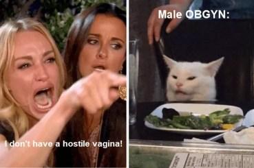Hostile Vagina