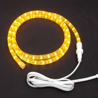 Incandescent Rope Lighting | Lighting Ideas
