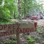 """Pošto JP NP Fruška gora testerom """"brine"""" o šumi, izbrojićemo sva stabla na Fruškoj gori"""