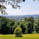 Samoorganizovane grupe u Sloveniji love migrante