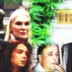 Aleksić: Proizvođač marihuane prvo zvao Andreja Vučića; Stefanović: To je apsolutno bolesna izmišljotina
