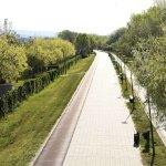 Srbija među zemljama sa najstrožim merama u borbi protiv kovida-19
