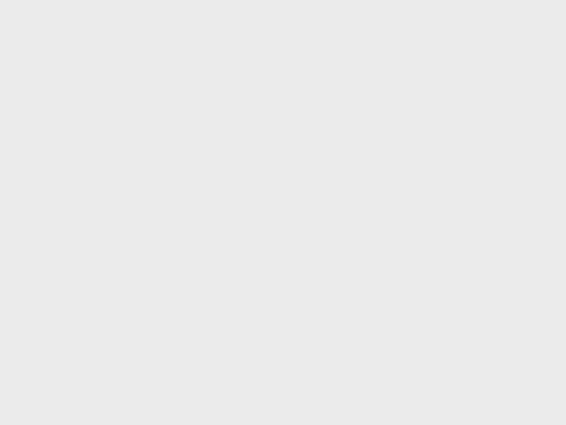 Five people died in car accidents in Bulgaria overnight. Photo by BGNES