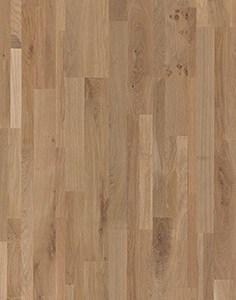 01630 Mountain Oak, variation