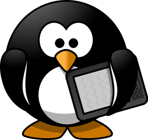 ebook formats on www.novytechandcopy.com