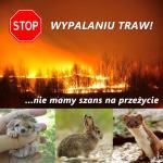 Wypalanie_traw