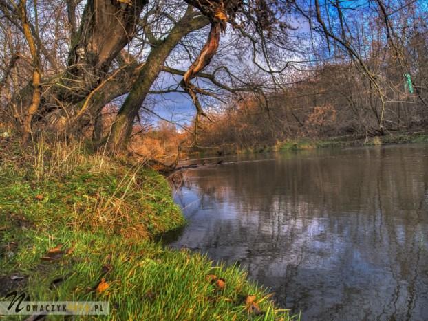 Rzeka Świder, Józefów