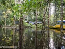 Dżungla Amazońska, nocowanie w dżungli