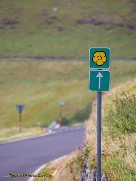 Oznaczenie szlaku Sóljuleiðir (ang. Buttercup) na Wyspach Owczych