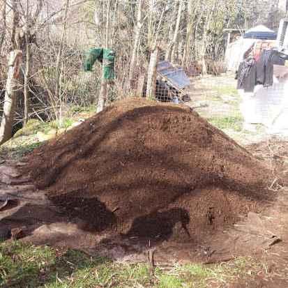 Reifer-Kompost-gesiebt