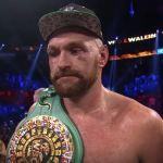 Tyson Fury face post Otto Wallin