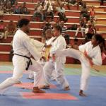 Martial Arts Exhibition