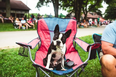 Full Moon Pickin' Parties are Dog Friendly!