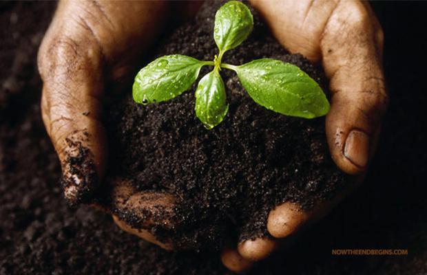urban-death-project-human-compost-katrina-spade