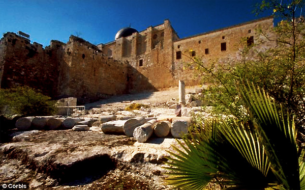 ophel-inscription-3000-years-old-king-david-solomon-israel-jerusalem-temple-mount