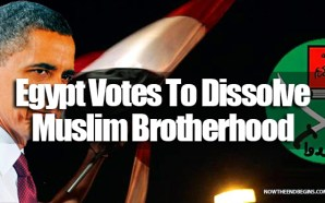 egypt-votes-to-dissolve-the-obama-funded-supported-muslim-brotherhood-august-10-2014