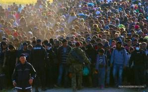 islamic-invaders-reach-austria-muslim-migrants-no-second-amendment
