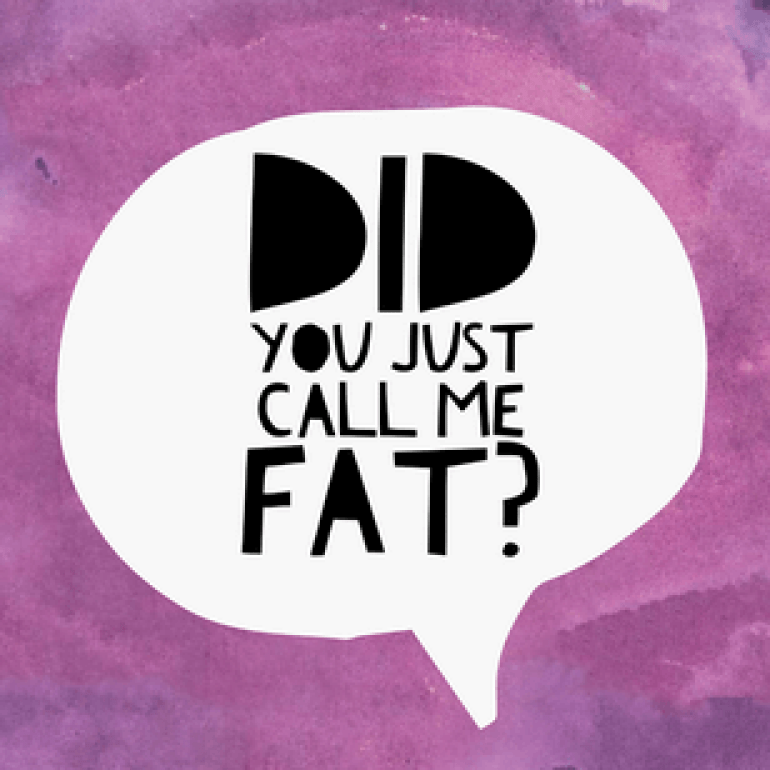 fat_insults