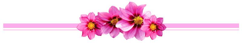 Maisons Fleuries Noyal-Pontivy