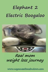 Elephant 2 Real Mom Weight Loss Journey