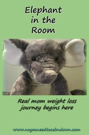 Elephant in the Room - Real mom weight loss journey.