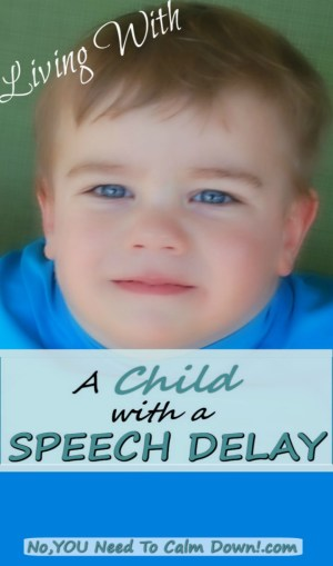 Living with a child with a speech delay