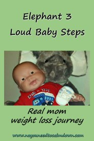 Elephant 3 Real Mom Weight Loss Journey Baby Steps