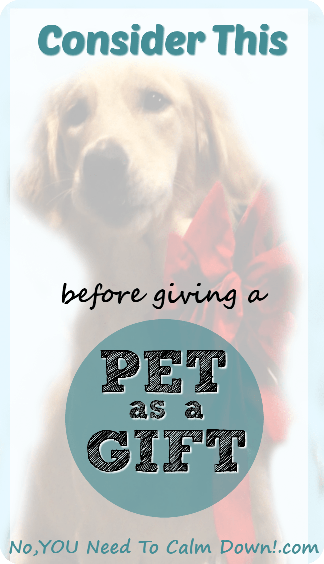 There are so many things to consider before giving a pet as a gift. What seems like a great idea now, may not work out down the road.To be fair to the animal, and the gift recipient, think about these things before deciding .