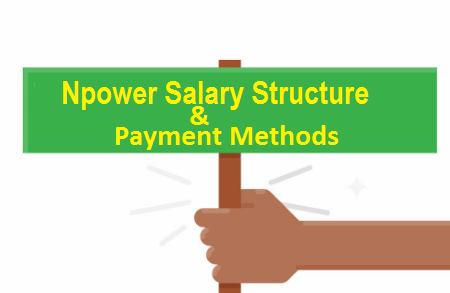 Npower Salary Structure and Payment Method 2018/2019 - Npower
