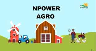 How to Register for Npower Agro Validation Survey Exercise 2020