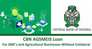 How to apply for AGSMEIS CBN Loan application Form 2020 no Collateral