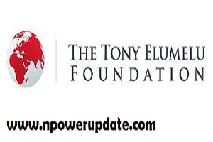 Tony Elumelu Foundation Entrepreneurship Programme 2021: How to Apply
