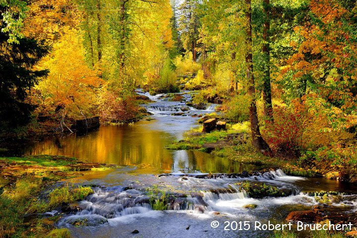 Fall Waterfall Wallpaper Hd 2nd Place Scenic Mountain Stream Fall Leaves By Robert