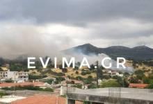 Photo of Φωτιά στην Εύβοια