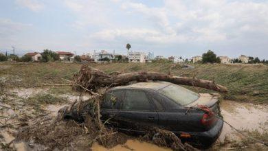 """Photo of """"Κοράκια» μαζεύτηκαν στην Εύβοια ψάχνοντας για πλημμυρισμένα οχήματα"""