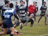 I risultati delle giovanili dei Rugby Lyons