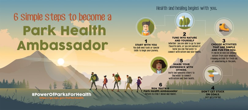 Infographic describing the six steps to becoming a park health ambassador within the power of parks for health initiative.