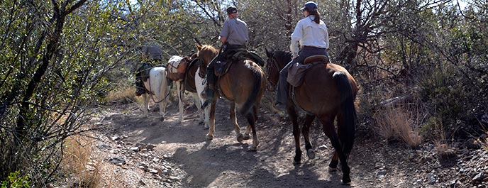 Horseback Riding  Big Bend National Park US National