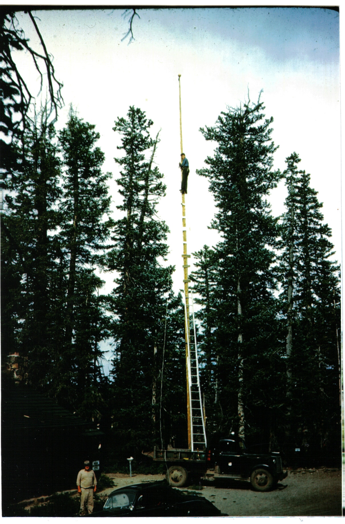 Cedar Flagpole