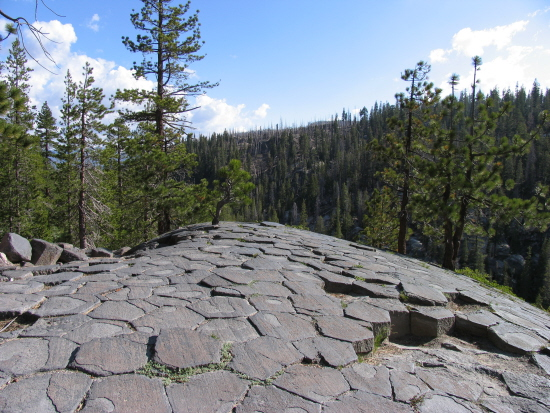 View of the glacially eroded top of the Devils Postpile formation