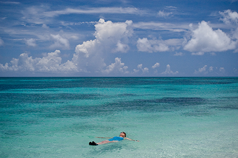 Snorkel And Swim Dry Tortugas National Park US